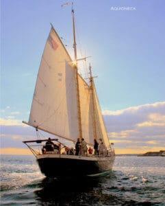 sunset cruise aquidneck