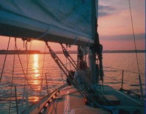 Startlight Sunset Charter